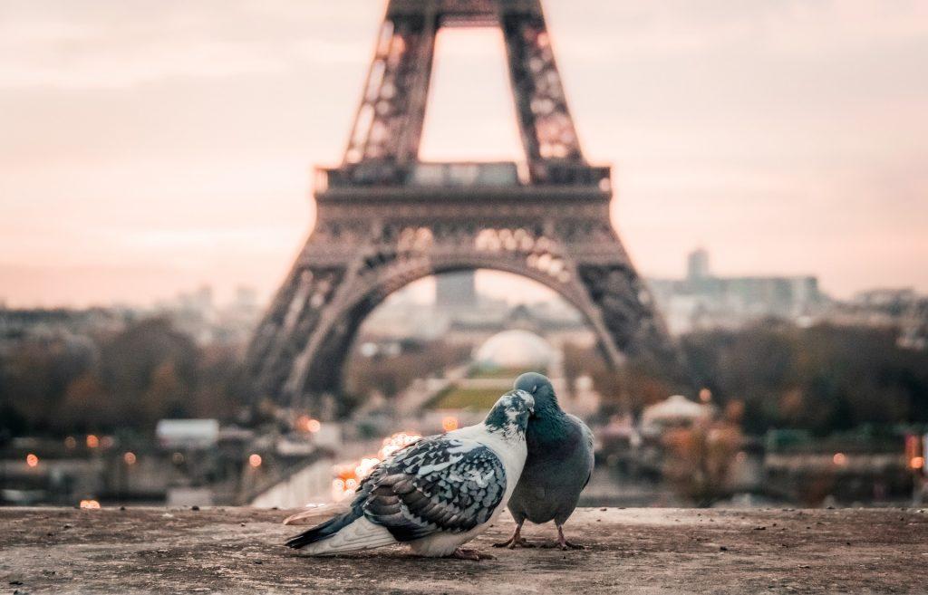 paris-citytrip-voyage-1-incontournables2